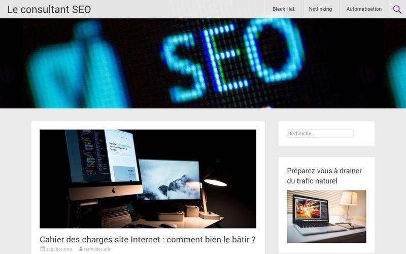 Le consultant SEO - Faites (vraiment) décoller votre business sur Google